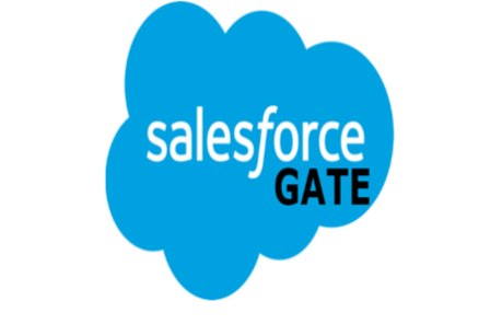 Salesforce Gate